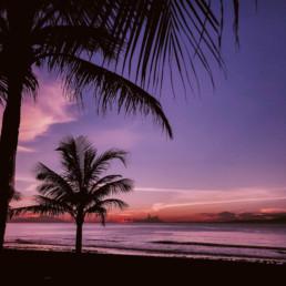 | Sunset After Manifestation Visuals